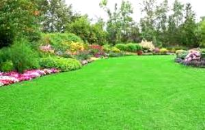lawn-applications-flowers1a