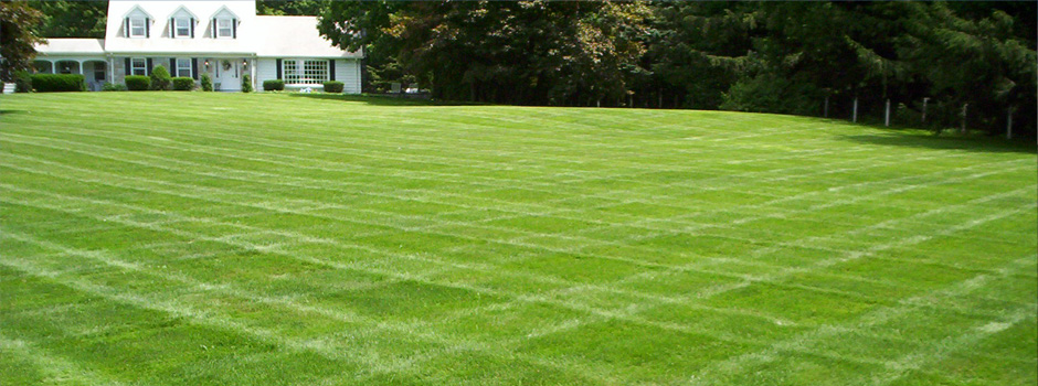 Morris County Lawncare
